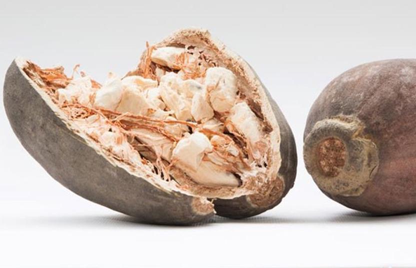 baobab nut
